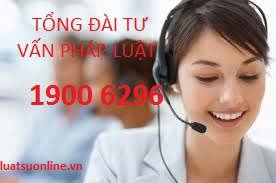 hotline 19006296